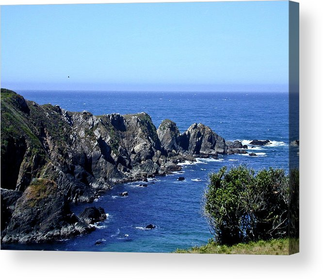 Arena Acrylic Print featuring the photograph Arena Point California by Douglas Barnett