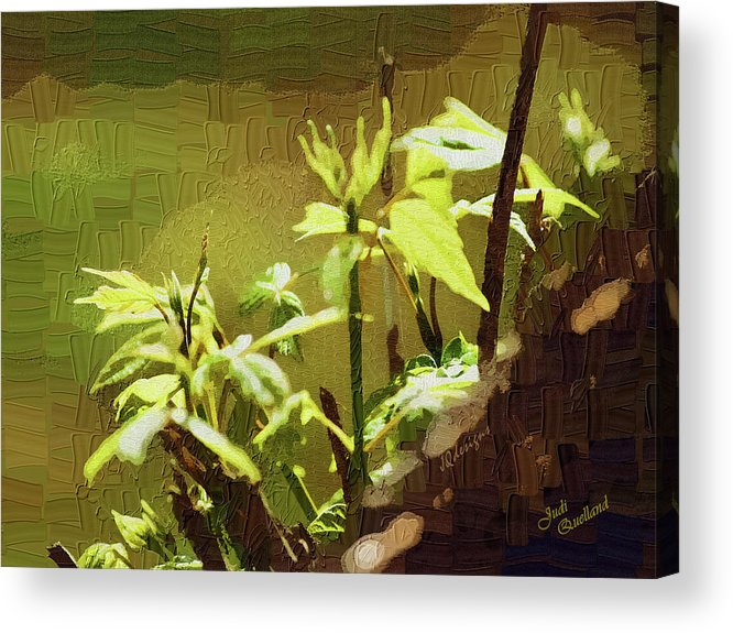 Spring Acrylic Print featuring the photograph Artistic Spring by Judi Quelland