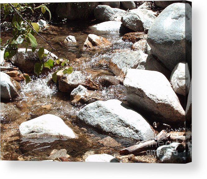 Water Acrylic Print featuring the photograph At Peace by Brian Edward Harris