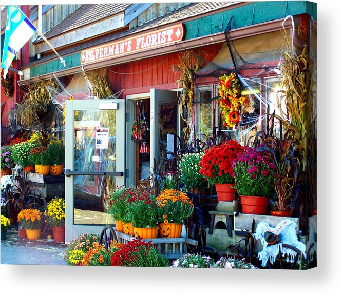 Autumn Acrylic Print featuring the photograph Autumn Is In The Air by Laura DAddona