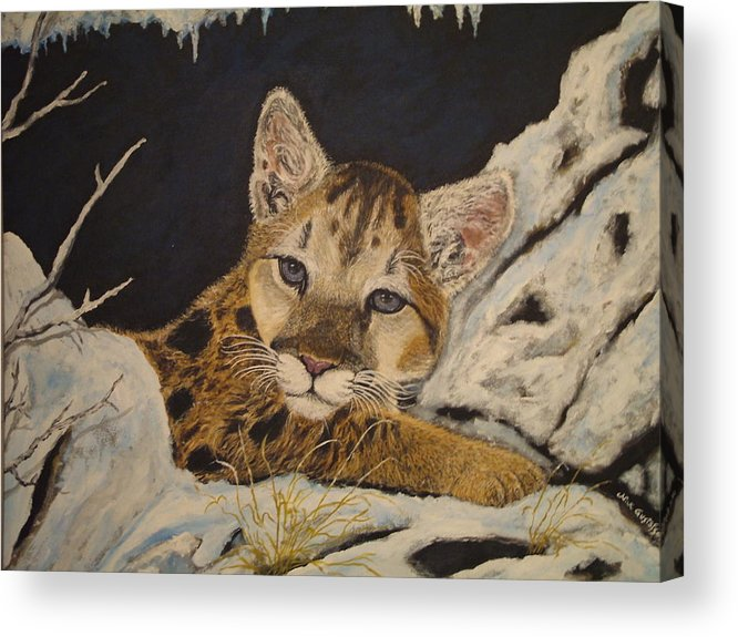 Baby Cougar Animal Nature Wildlife Snow Acrylic Print featuring the painting Baby Cougar In Snow by Nick Gustafson