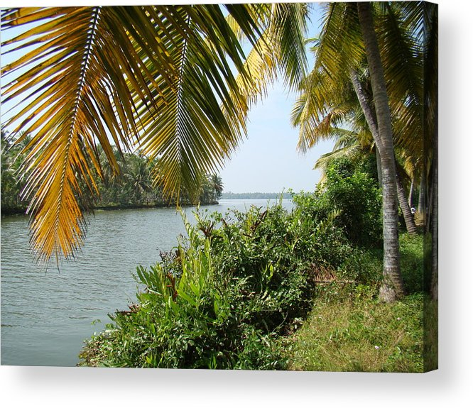 Waterscapes Acrylic Print featuring the photograph Backwaters Of Kerala-2 by Reshmi Shankar