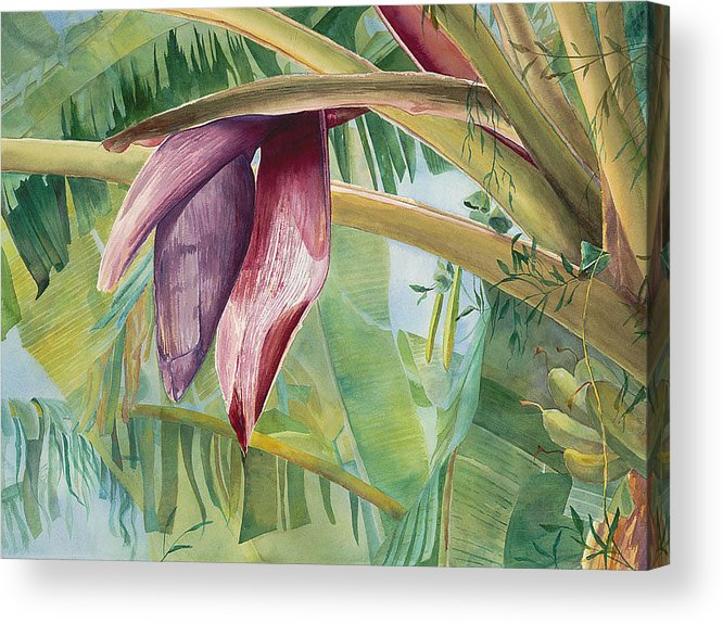 Bananas Acrylic Print featuring the painting Banana Flower by AnnaJo Vahle