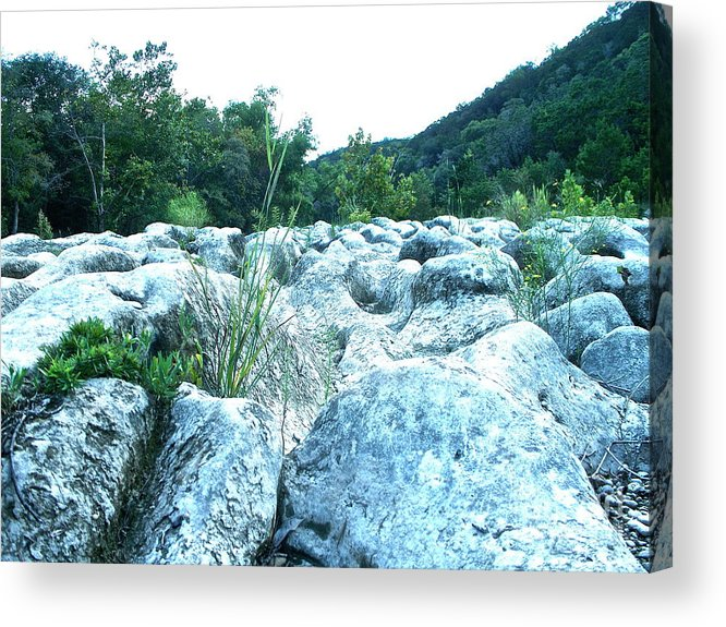 Texas Acrylic Print featuring the photograph Barton Creek Dried Up by Chuck Taylor