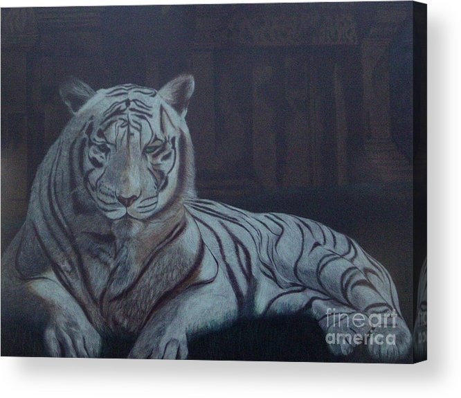 Wild Live Acrylic Print featuring the painting Bengala Tiger by Fanny Diaz