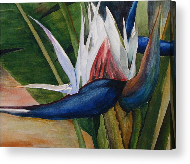 Flower Acrylic Print featuring the painting Bird Of Paradise by Dwight Williams