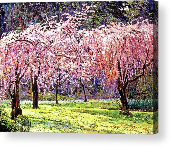 Cherry Blossoms Acrylic Print featuring the painting Blossom Fantasy by David Lloyd Glover