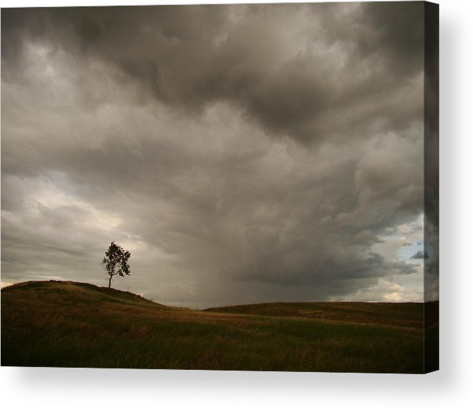 Landscape Acrylic Print featuring the photograph Blowin' In The Wind by Michelle Oppegard