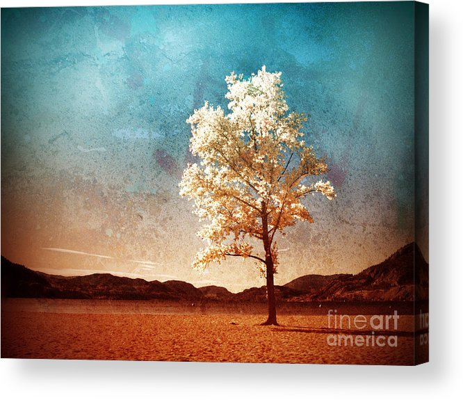 Beach Acrylic Print featuring the photograph Blue Sky Dreams by Tara Turner