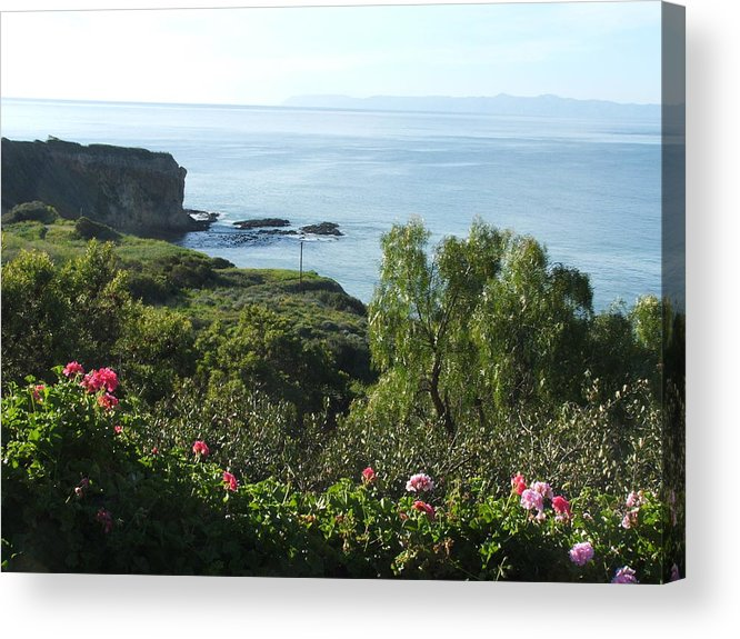 Landscape Acrylic Print featuring the photograph Breath Of Fresh Air by Shari Chavira