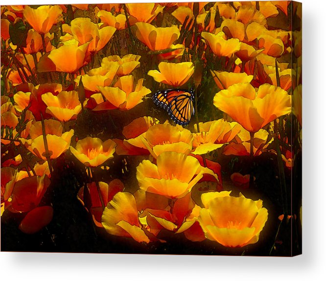 Butterfly Effect Acrylic Print featuring the painting Butterfly Effect by Robby Donaghey
