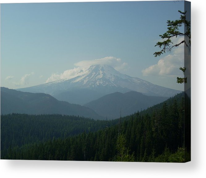 Mt Hood Acrylic Print featuring the photograph Cap And Hood by Sara Stevenson