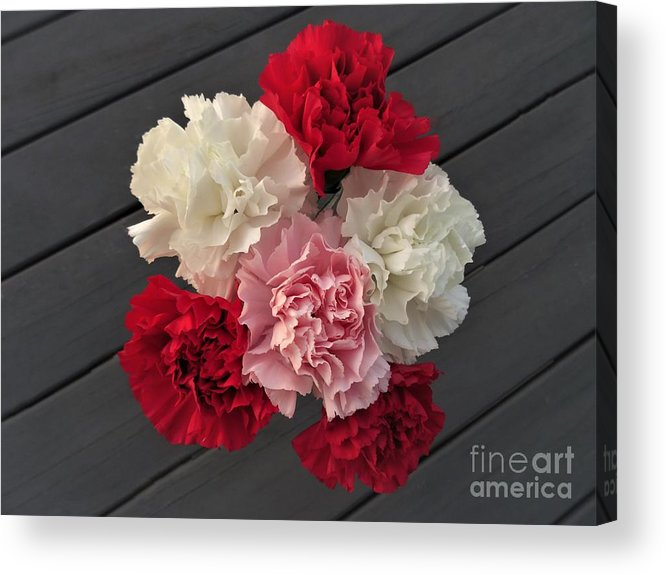 Carnation Acrylic Print featuring the photograph Carnations by Scenic Sights By Tara