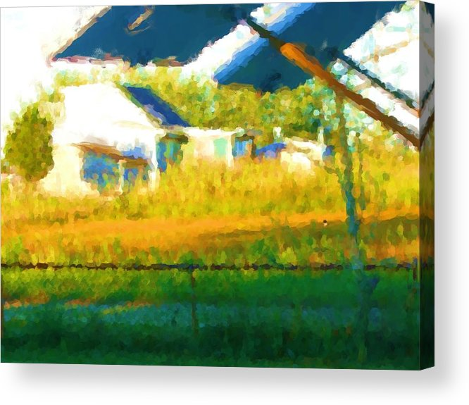 Acrylic Print featuring the painting Cat In The Grass by Jonathan Galente
