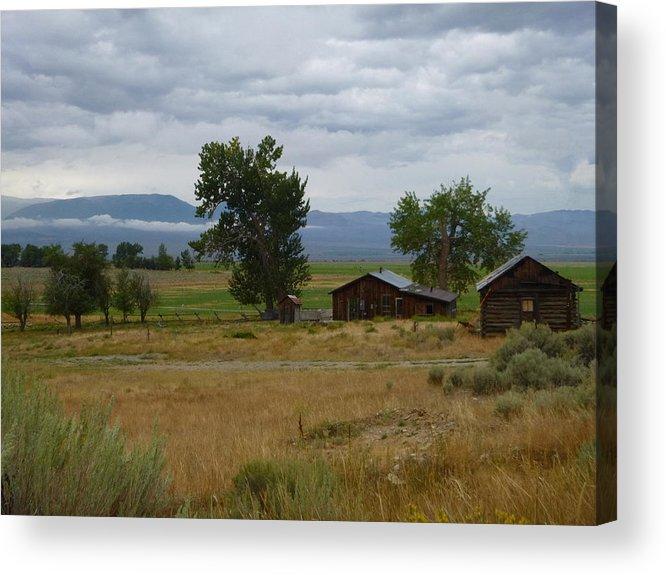 Idaho Acrylic Print featuring the photograph Central Idaho Scene by Dan Dixon