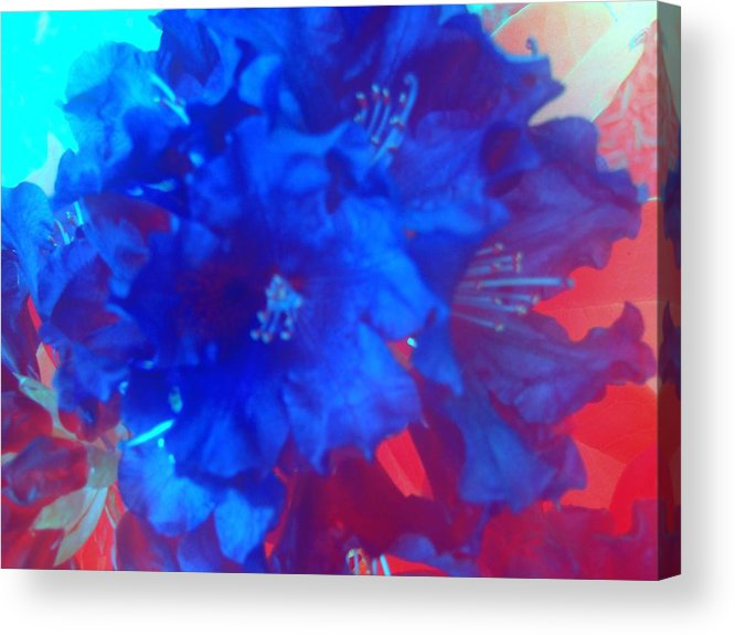Flowers Acrylic Print featuring the photograph Christine's Bouquet by Tiffany Vest