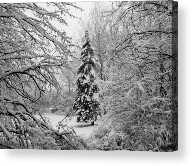 Fine Art Acrylic Print featuring the photograph Christmas Snow by Michael L Kimble