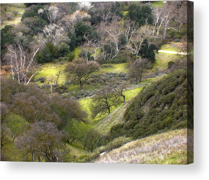 Landscapes Acrylic Print featuring the photograph Coming Down The Hill by Karen W Meyer