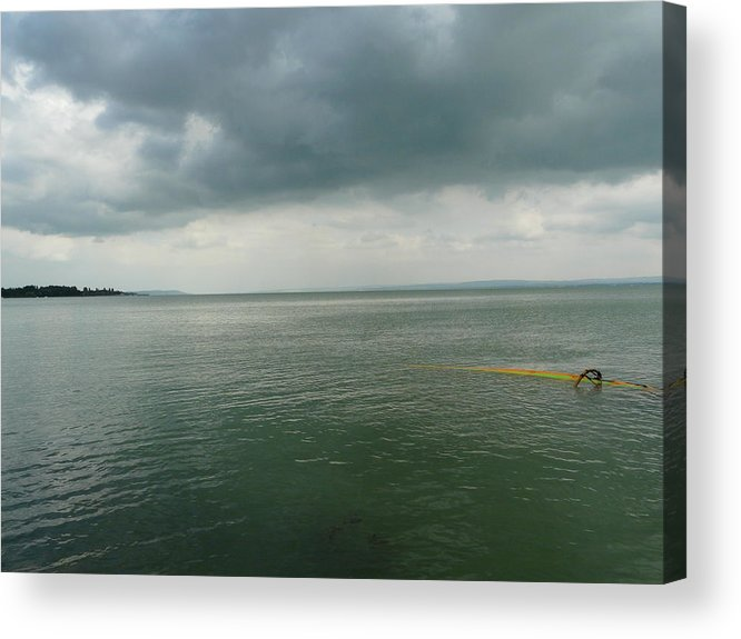 Lake Acrylic Print featuring the photograph Coming Up For Air by Attila Balazs
