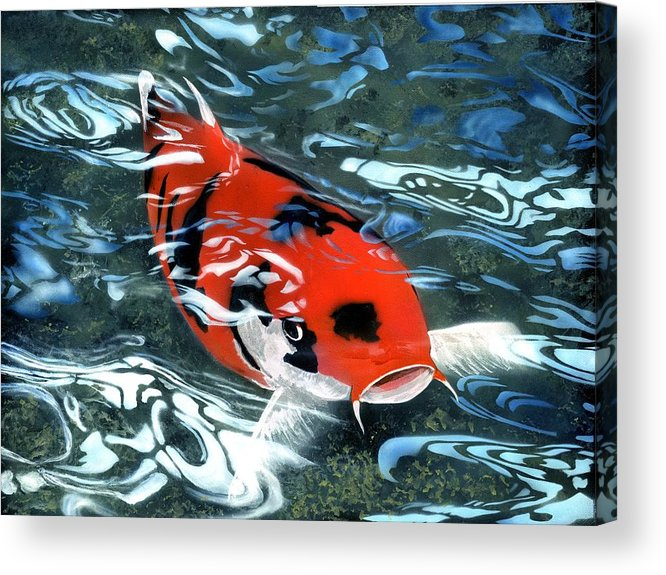 Coy Koi Acrylic Print featuring the painting Coy Koi by Charles Parks