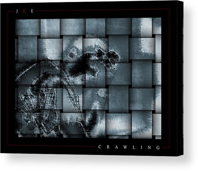 Crawling Acrylic Print featuring the photograph Crawling by Jonathan Ellis Keys