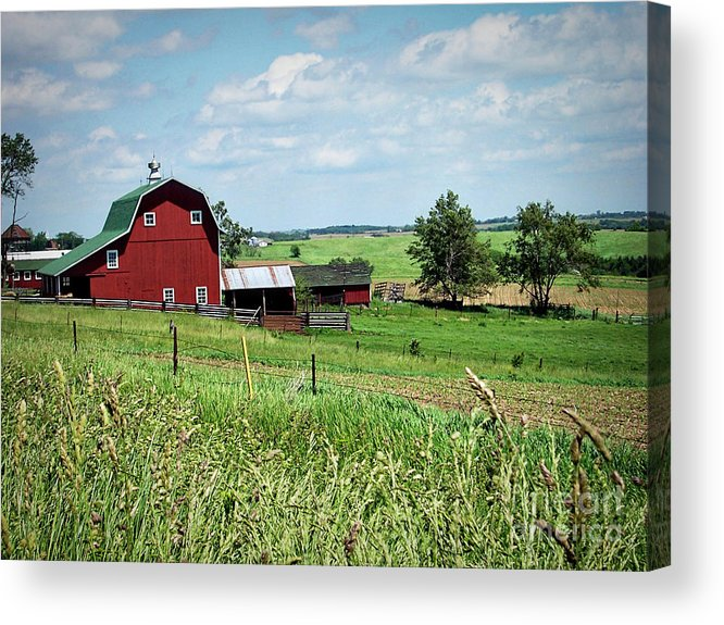 Art Acrylic Print featuring the photograph Down On The Farm by Jenness Asby