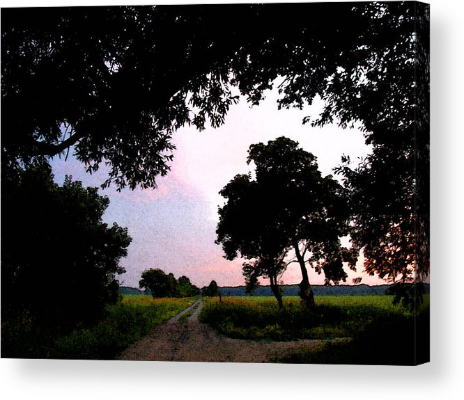 Nature Acrylic Print featuring the photograph Down The Road Wc 2 by Lyle Crump