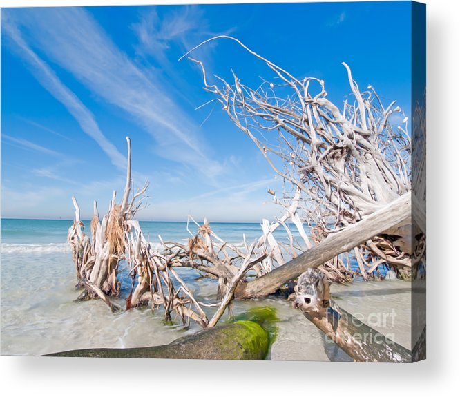 Driftwood Acrylic Print featuring the photograph Driftwood C141348 by Rolf Bertram