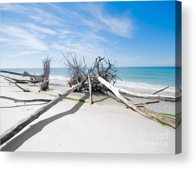 Driftwood Acrylic Print featuring the photograph Driftwood C141545 by Rolf Bertram