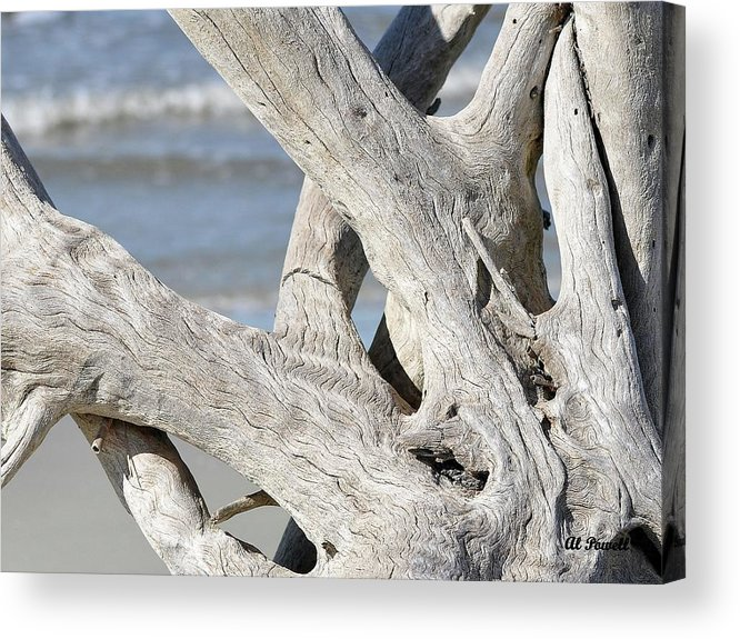 Driftwood Acrylic Print featuring the photograph Driftwood Detail by Al Powell Photography USA