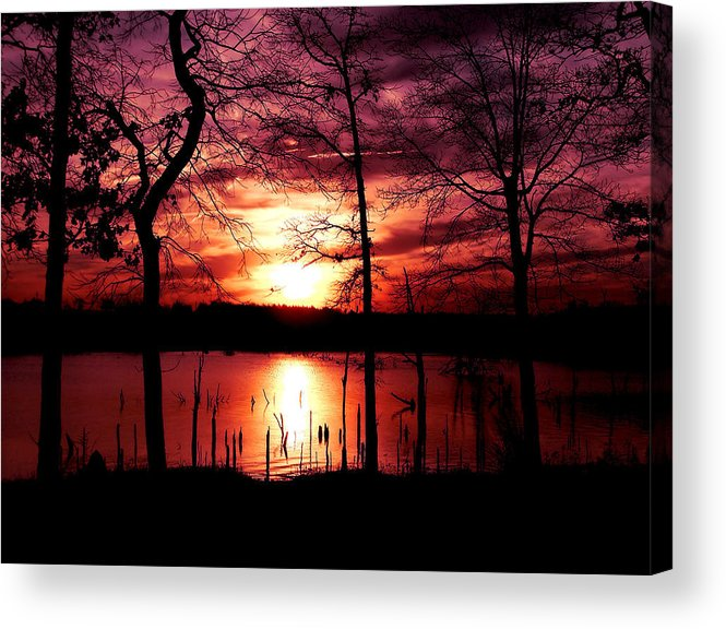Sunset Acrylic Print featuring the photograph Evening Wine by Karen Scovill