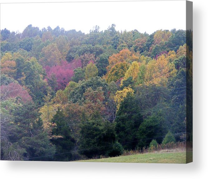 Fall Acrylic Print featuring the photograph Fall Colors In Rockbridge County by Eddie Armstrong