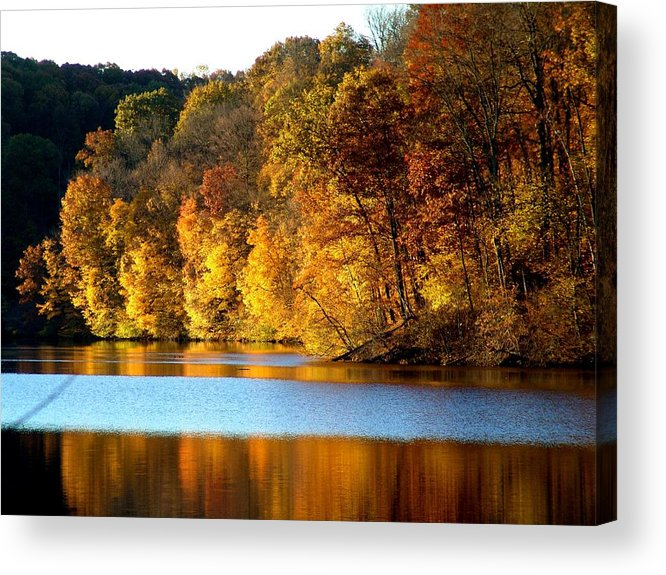 Trees Acrylic Print featuring the photograph Fall Reflections Of Indiana by Carol Milisen
