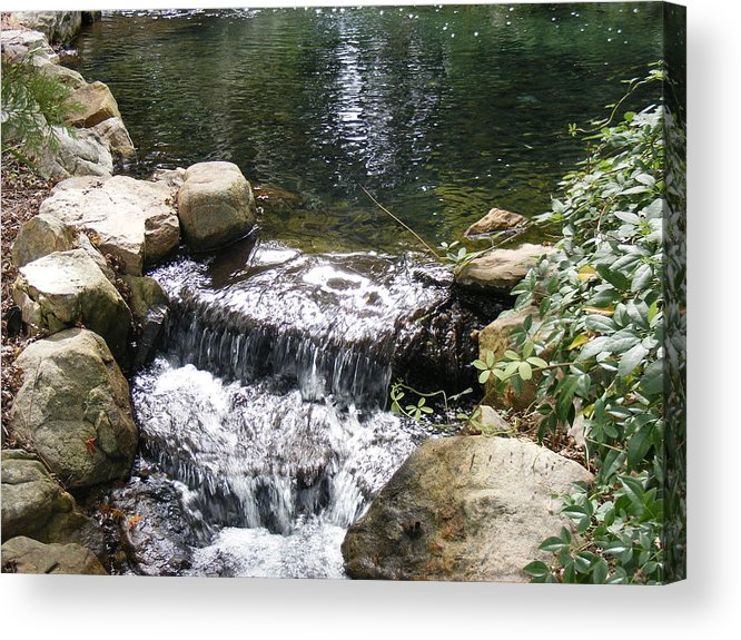 Water Acrylic Print featuring the photograph Falling by James and Vickie Rankin