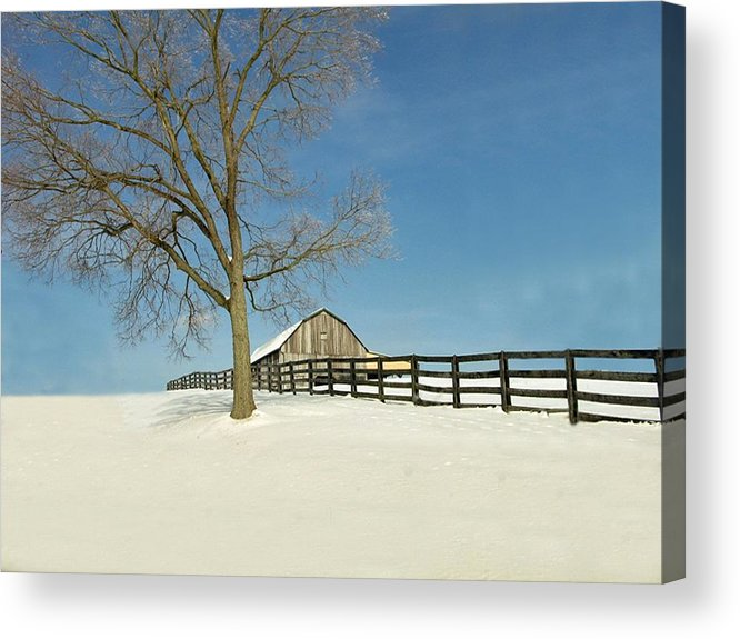 Weather Acrylic Print featuring the photograph Fence Line by Martie DAndrea
