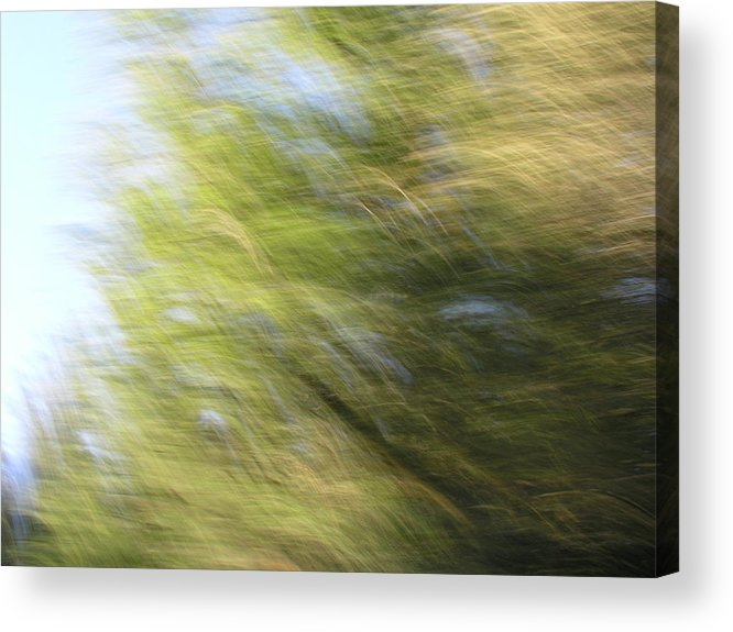 Landscape Acrylic Print featuring the photograph Field Of Dreams by Brad Wilson