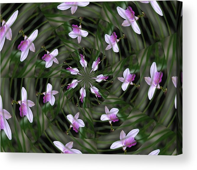 Flowers Acrylic Print featuring the photograph Floating Orchids by Judy Ford