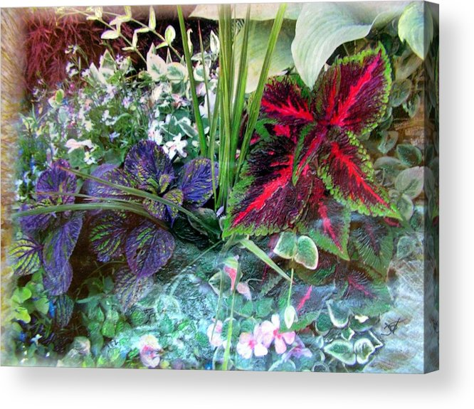 Flower Box Acrylic Print featuring the mixed media Flower Box by John Vandebrooke