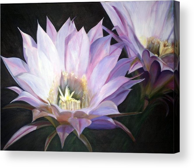 Flower Acrylic Print featuring the painting Flowering Cactus by Fiona Jack