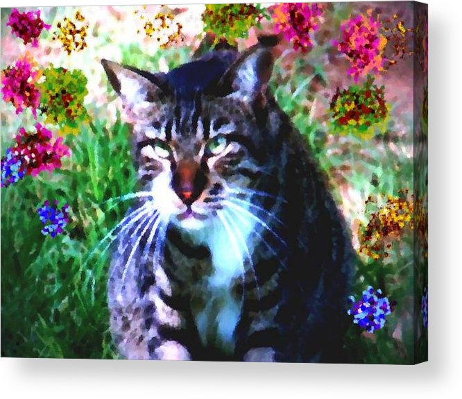 Cat Grey Attention Grass Flowers Nature Animals View Acrylic Print featuring the digital art Flowers And Cat by Dr Loifer Vladimir