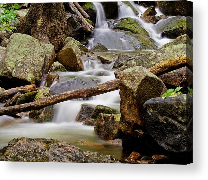Stream Acrylic Print featuring the photograph Flowing Stream by Jim DeLillo