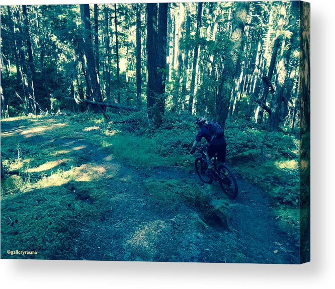 Mountain Bike Acrylic Print featuring the photograph Forest Ride by Rasma Bertz