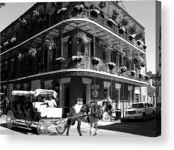 New Orleans Acrylic Print featuring the photograph French Quarter Carriage Ride by Shawn McElroy