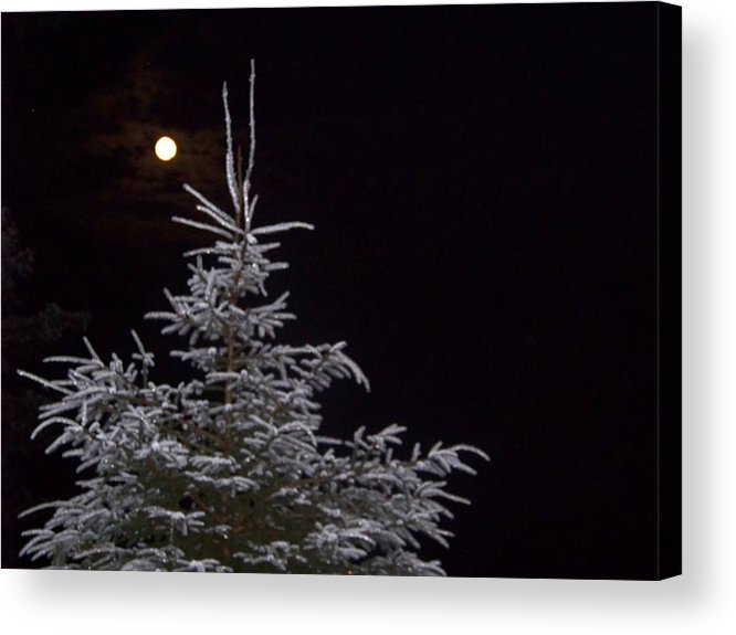 Moon Acrylic Print featuring the photograph Full Moon by Donna Davis