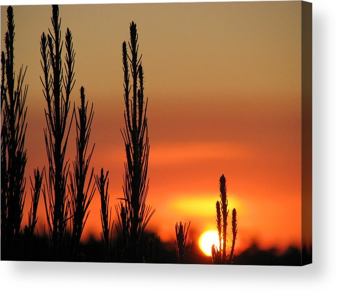 Mt Gambier Acrylic Print featuring the photograph Gambier Sunset by Robert Jenner