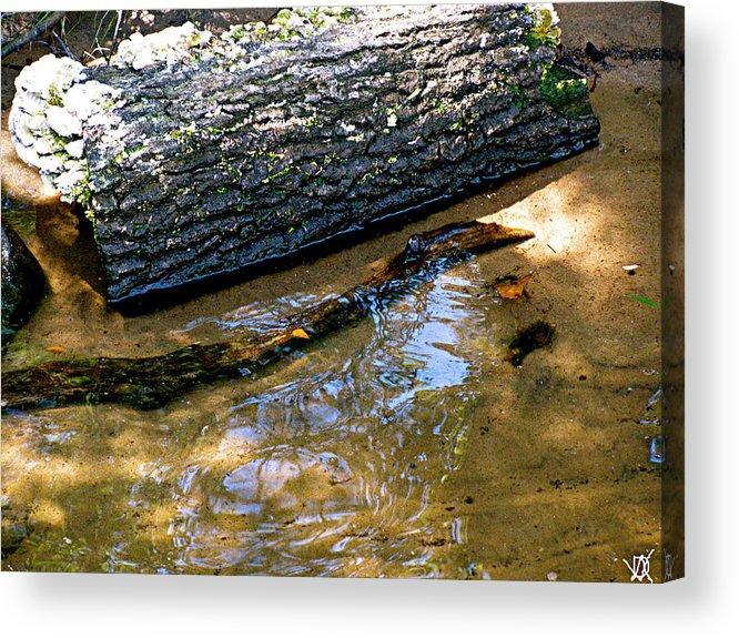 Glassy Water Acrylic Print featuring the photograph Glassy Water by Debra   Vatalaro