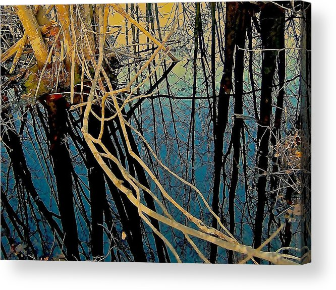 Marsh Acrylic Print featuring the photograph Going Under by Elizabeth Tillar