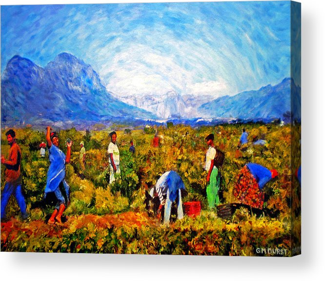 Vineyard Acrylic Print featuring the painting Harvest Time by Michael Durst