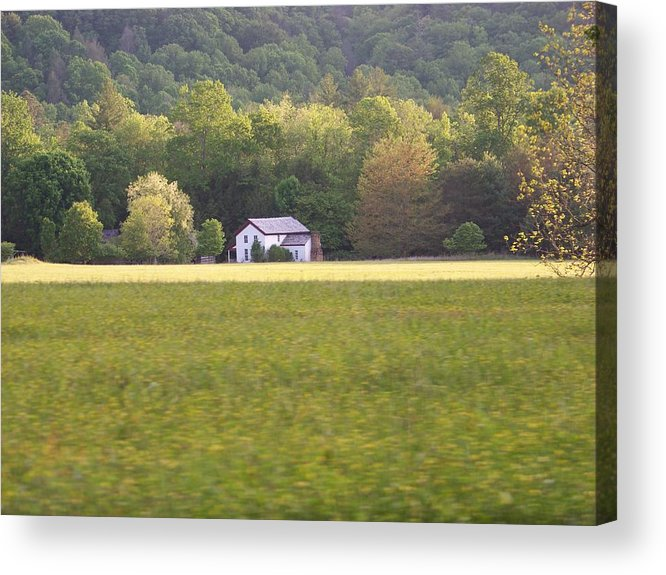 Nature Acrylic Print featuring the photograph Home by Jessica Burgett