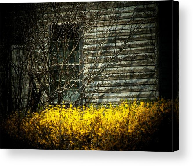 Old House Acrylic Print featuring the photograph House Flowers by Michael L Kimble